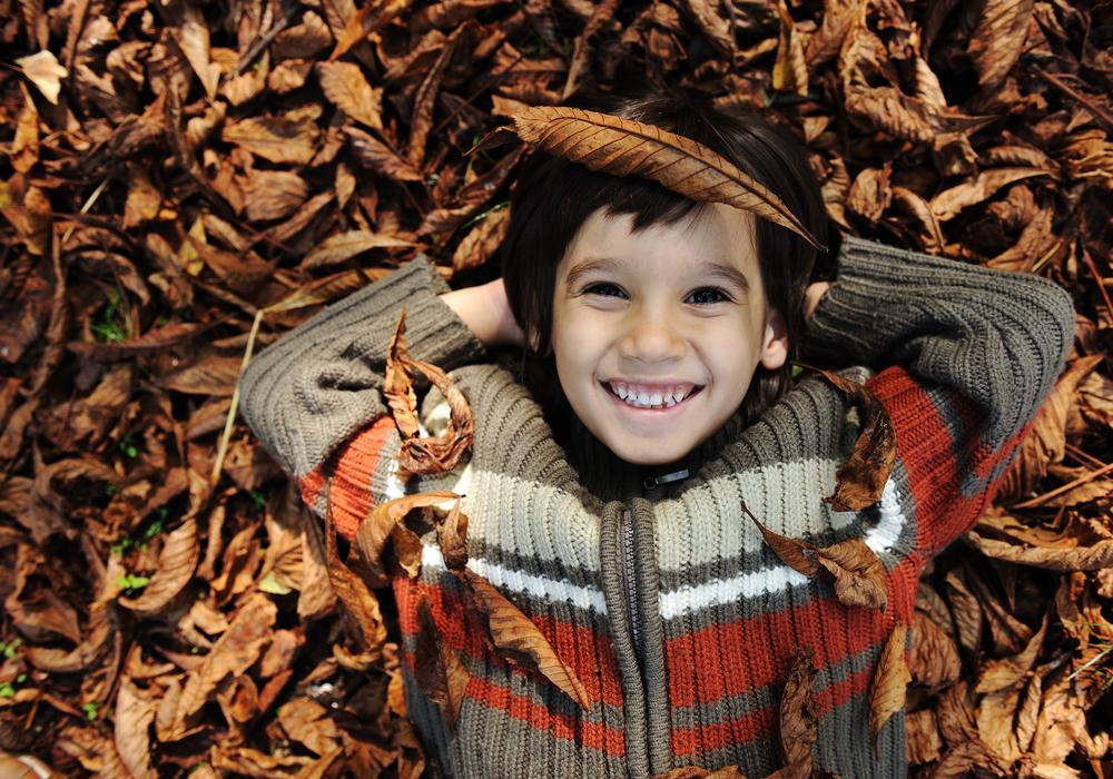 10 enfant dans les feuilles